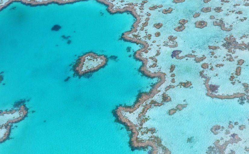 Grande Barriera Corallina australiana: come raggiungerla